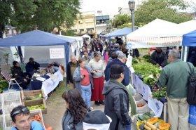 Mercados Populares: los camiones de frutas y pescados recorrerán las plazas céntricas de la Ciudad