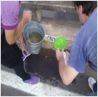 Se completaron extracciones de muestras programadas