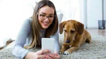 Dog influencer: cada vez más perros tienen su perfil en Instagram