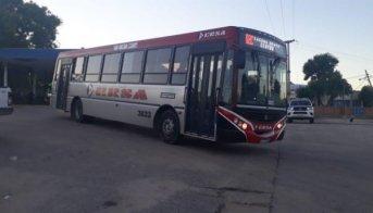 Transporte: Desde ERSA afirman que hay un colectivo por ramal