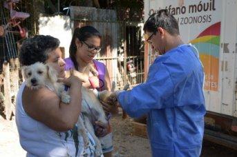 Los programas de Delegaciones Móviles y Mascotas Saludables llegan al barrio Santa María