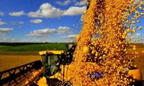 Fondo Sojero: Naci�n cit� a provincias