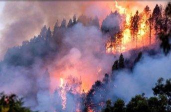 Bolsonaro envía a militares a combatir los incendios en el Amazonas