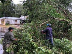 La tormenta azotó a la localidad de Mburucuyá