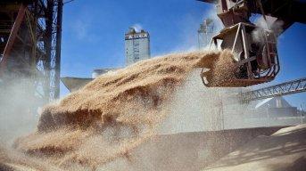 Agricultura suspendió el registro para la exportación de granos
