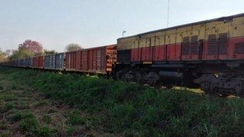 Se arrojó a las vías del tren pero el Belgrano Cargas logró frenar