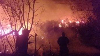 INTA: en menos de un mes se incendió casi el 60 % de la estación experimental