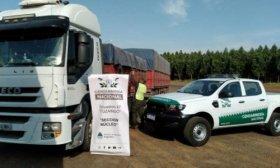 Incautaron 196 toneladas de soja trasladadas en siete camiones